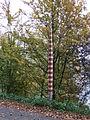 Rheinschiene bei Düsseldorf DSCF6514.jpg
