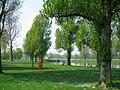 Rheinstrandbad - geo.hlipp.de - 3096.jpg