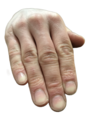 Right Hand Fingers.png