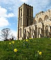 Ripon Cathedral in spring.jpg