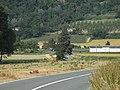 Rivalta Bormida (Italy) 20150607.jpg