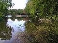 River Camowen, Omagh - geograph.org.uk - 1519383.jpg
