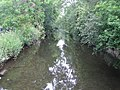 River Lee in Wheathampstead - geograph.org.uk - 466066.jpg