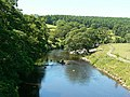 River Wharfe looking west from aqueduct - geograph.org.uk - 207004.jpg