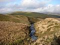 River Wye- Afon Gwy - geograph.org.uk - 1107672.jpg