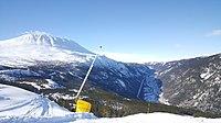 Enslige Mindreårige - - Rjukan - Se Regnskap, Roller og mer