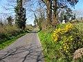 Road at Clontygigny, Ardlougher (geograph 2870401).jpg
