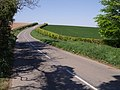 Road to Router - geograph.org.uk - 427399.jpg