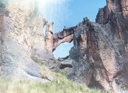 Bosque de piedras de huayllay animales