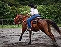 Rodeo in Panama 34.jpg