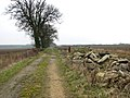 Rubble beside track to Planet Farm, Hethersett - geograph.org.uk - 2290865.jpg