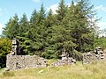 Ruins of Blaen Fflur Farmhouse - geograph.org.uk - 518530.jpg
