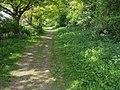 Rumbolds Lane - geograph.org.uk - 1297102.jpg