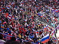 Russian fans 2014-02-13 Winter Olympics in Sochi.jpg