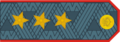 Russian police colonel general2.png
