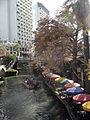 SA hotel view.jpg