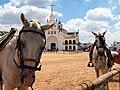 Saca de las Yeguas (14587428535).jpg