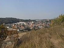 Salzburg von Osten gesehen 1.jpeg