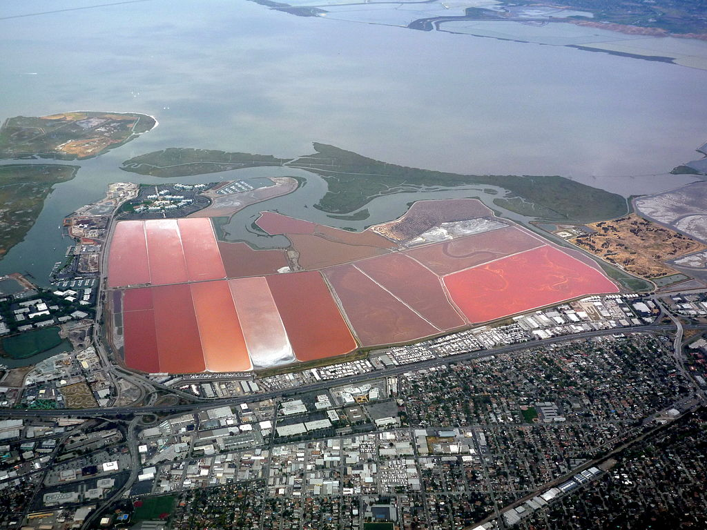 file san francisco bay from the air in may 2010. Black Bedroom Furniture Sets. Home Design Ideas