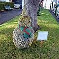 Santa Cruz, Madeira - 2013-01-11 - 86227536.jpg