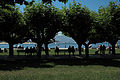 Santoña Paseo Pereda 126.jpg