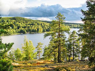 Muuratsalo - Muuratsalo and Lake Päijänne seen from Satasarvinen hill in Muuratsalo