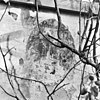 schildering op buitenmuur in tuin - elburg - 20068953 - rce