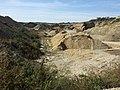 Schottergrube nordwestlich von Asparn an der Zaya sl18.jpg