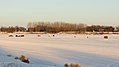 Selkirk Park, Manitoba (484597) (9445471461).jpg