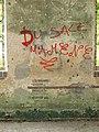 Senan-FR-89-lavoir du Tholon-graffiti-a6.jpg