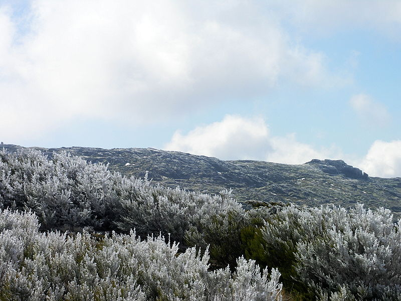 Image:SerraEstrela-MAR2007-6.JPG