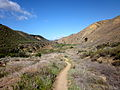 Sespe Wilderness Topography 1.JPG