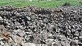Sevaberd Fortress ruins (119).jpg