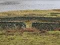 Sheepfold - geograph.org.uk - 320128.jpg