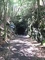 Shepaug tunnel 023.JPG