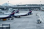 Sheremetyevo-airport-russia-2013-june.jpg