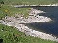 Shoreline, Loch Quoich - geograph.org.uk - 187559.jpg
