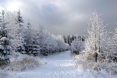 Silesian - Moravian Beskids in winter 2014.JPG