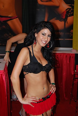 2008 avn adult entertainmnet expo pictures