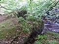 Slatehole Bridge, ruins on north bank, Auchinleck Estate, East Ayrshire.jpg