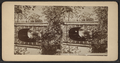 Sleepy Hollow Bridge, from Robert N. Dennis collection of stereoscopic views.png