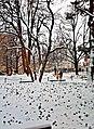 Snow outside the George Sherman Union, Boston University - panoramio.jpg