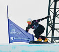 Snowboard LG FIS World Cup Moscow 2012 010.jpg