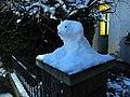 Snowdog guard.jpg