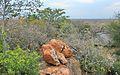 Sondela Rocky Outcrop, View East - panoramio.jpg