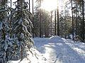 South Karelia, Finland - panoramio (9).jpg