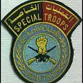 Special troops 2014-06-20 09-30.jpg