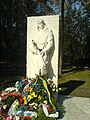 Spomenik Crvenoarmejcu.JPG