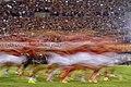 Sport (1).jpg