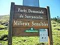Station de ski de fond de Nistos forêt sarrancolin.jpg
